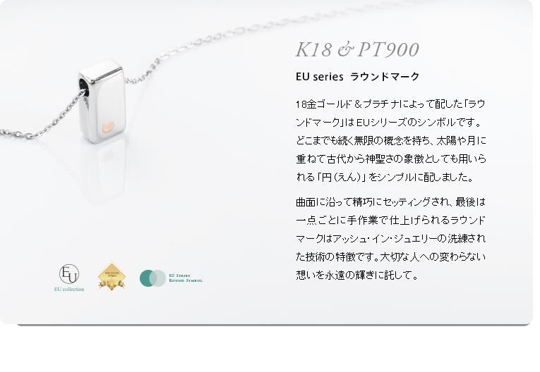 遺骨ペンダント アッシュイン EU-001PT ステンレス×プラチナ [防水仕様] 角柱型
